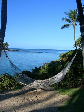Hilton Waikoloa Village: view over the lagoon