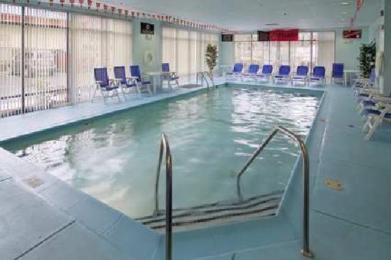 هامبتون إن كوليدج بارك: Indoor Pool