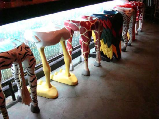 rain forest cafe at mgm grand hotel and casino the coolest barstools in vegas - Cool Bar Stools