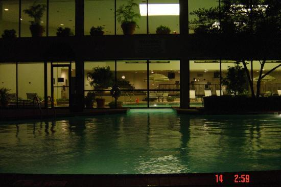 DFW Airport Marriott South : Pool in the late evening