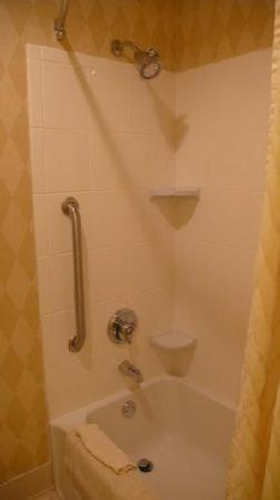 Residence Inn Kansas City Downtown/Union Hill: Nice shower head. Love the soaps! New clean curtain (2007)