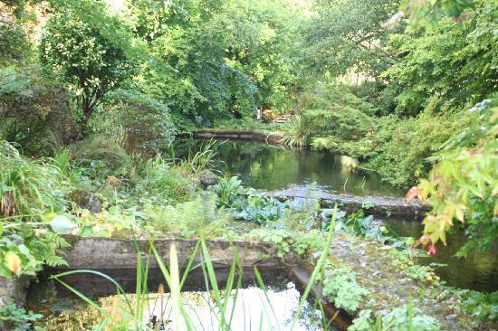 Gidleigh Park : Gidleigh's water garden