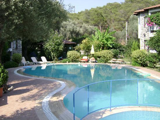 Olive Garden Apart Otel: Olive Garden Pool