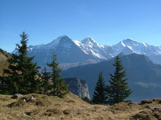 Wilderswil, Swiss: Eiger, Mönch and Jungfrau from Schynige Platte