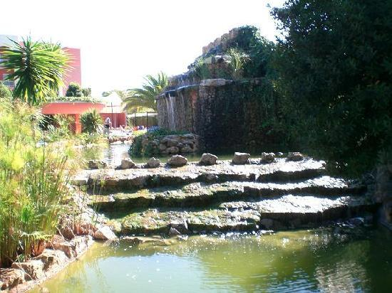 Falesia Hotel: The waterfall at the pool