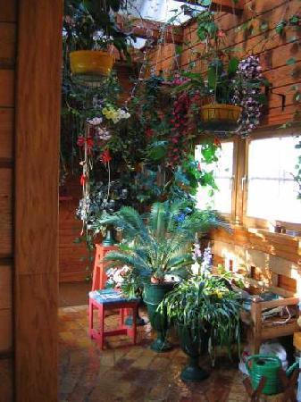 Homestay  Riga: Jardin d'hiver
