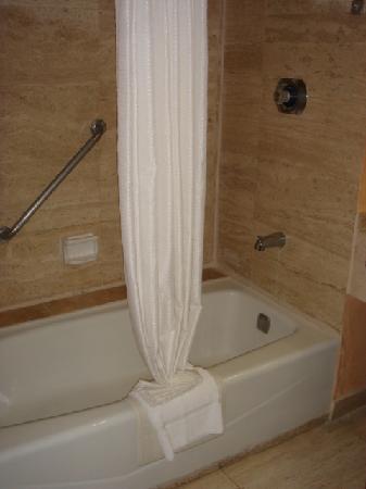 Grand Hotel Tijuana: Bath