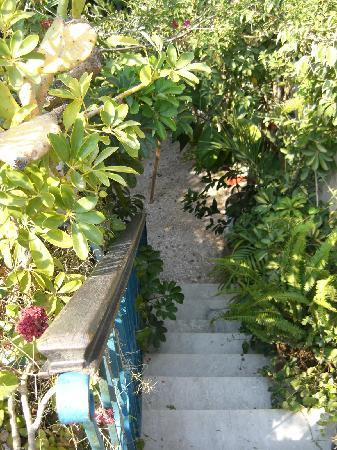 Olga's Pension: Stairs to the roof terrace