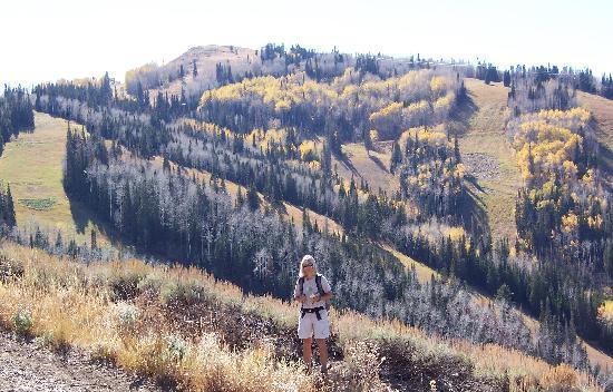 Shadow Ridge Resort Hotel: We loved the scenery