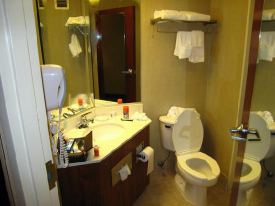 Hampton Inn Bowie: Bathroom.  Shower is to the right