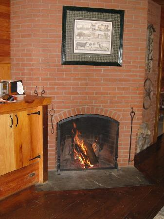 Pitcher Inn: Fire place in Stable Suite