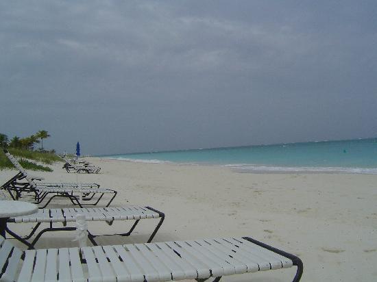 Villa Renaissance : Beach with TS Noel