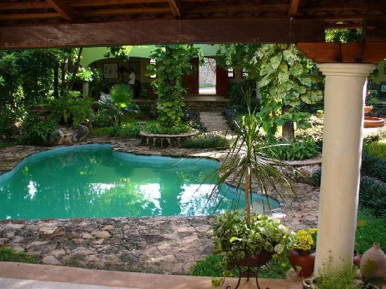 Casa Quetzal: garden view