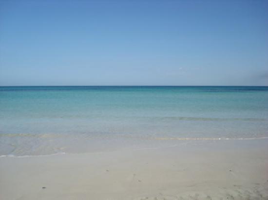 Seabel Rym Beach: Mare fantastico!