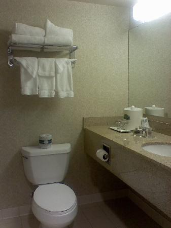 Wingate by Wyndham Sylvania/Toledo: Wingate Bathroom