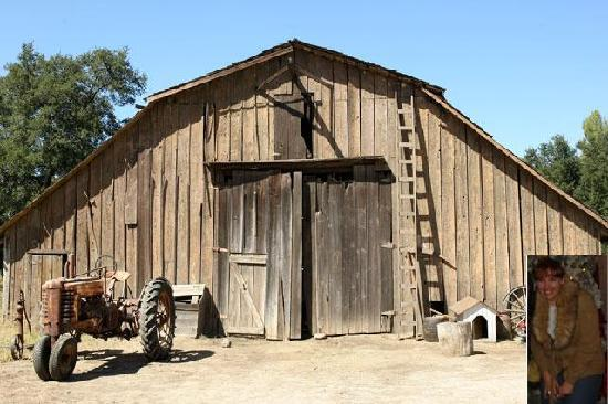 Schrute Farms: Me in front of the barn