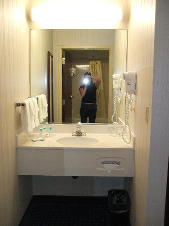 SpringHill Suites Cincinnati Northeast/Mason: Vanity