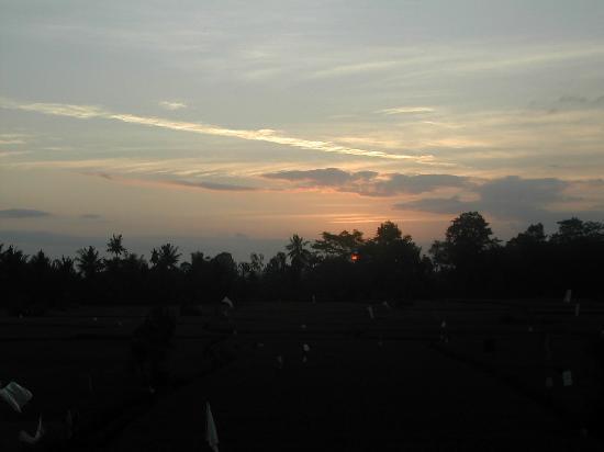 Tegal Sari: Sunset from balcony