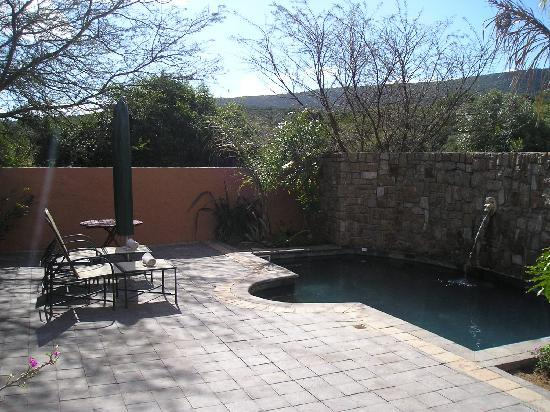 Shamwari Game Reserve Lodges: View of our Patio