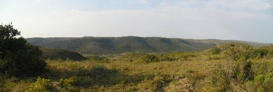 Shamwari Game Reserve Lodges: Panoramic view of the bushveld