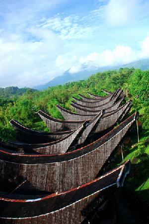 Toraja Heritage Hotel: The view from my room