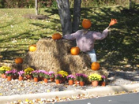 BEST WESTERN Smoky Mountain Inn: Pumpkin People - BestWestern Waynesville