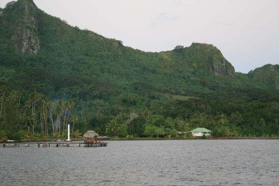 Villas Bougainville : View of dock and villa #3