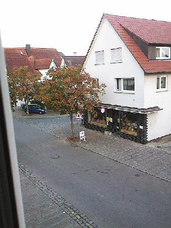 Hotel am Hirschgarten: View from my room