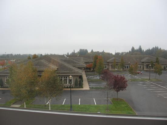 Comfort Inn & Suites McMinnville: window view, medical center