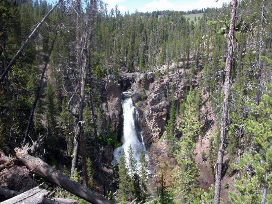 Crystal falls near grand canyon of yellowstone picture for Crystal falls