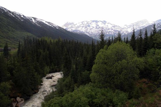 Skagway, AK: mountain stream near the RR