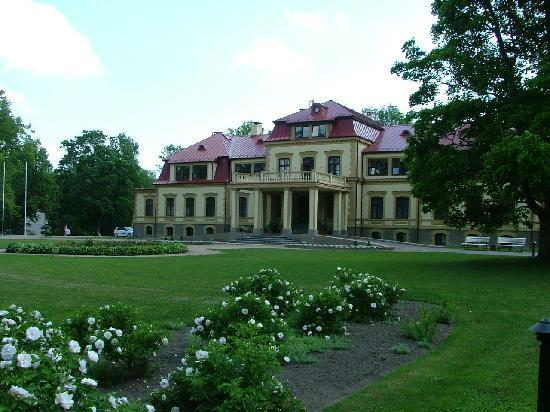 Dikli Palace Hotel: hotel