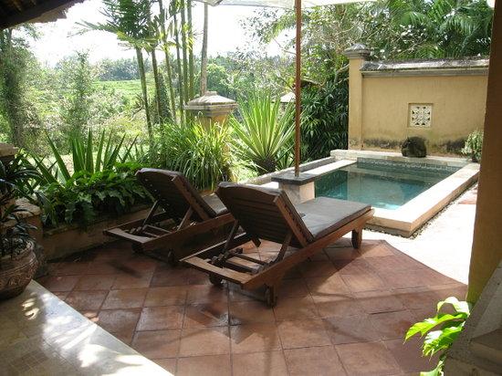 วิลล่า เซมานา: piscine privée