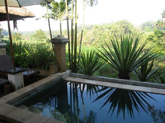 Villa Semana: vue de la chambre