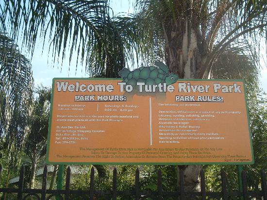 Turtle River Park : Turtle Park