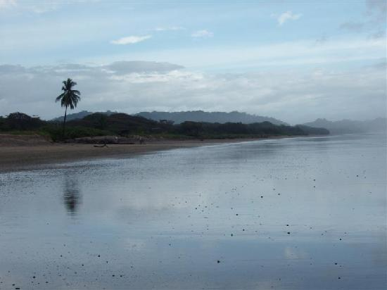 The beach near Casa Tucan