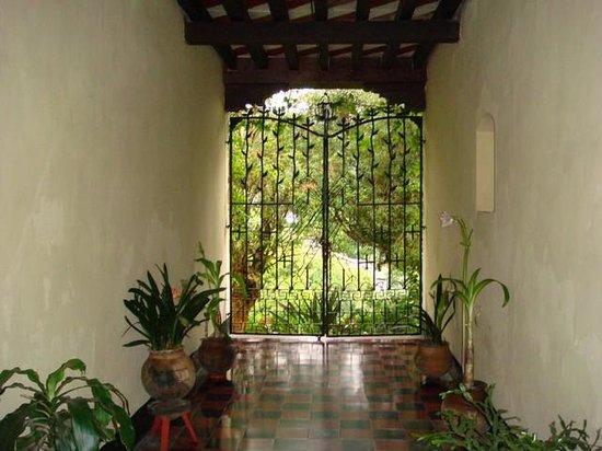 Hotel Museo Mayan Inn: Porte sur la nature