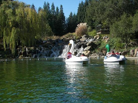 Gilroy Gardens Family Theme Park: Swan boats on the large lake, complete with waterfalls
