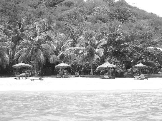 Tamarind Beach Hotel & Yacht Club: From the water Looking at the Tamarind Hotel (yes, it's in there)