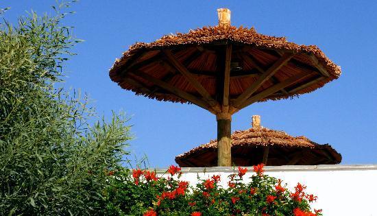 Ammos Naxos Exclusive Apartments: Reception area