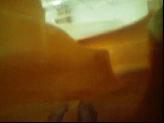 Great Wolf Lodge The Body Slides Were Really Cool There Also Others With