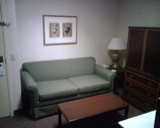 Comfort Inn and Suites Newark: living room