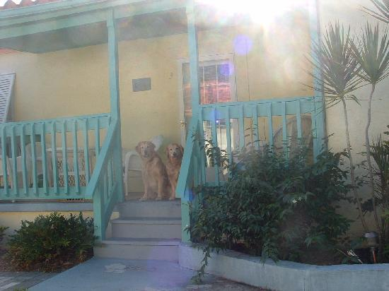 Island Paradise Cottages of Madeira Beach : Vacation Time!!!!!