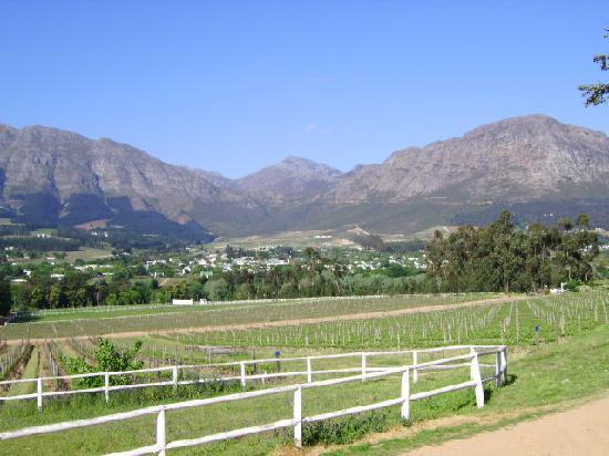 La Fontaine Guest House: View from Mont Rochelle Winery