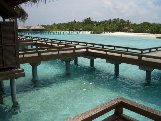 Furanafushi Island: maldives fullmoon