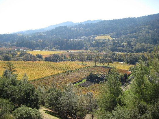 Napa Valley, CA: View from Sterling