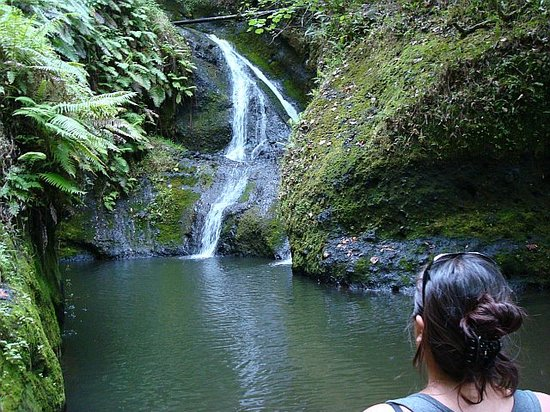 Islas Cook: Raro Tour-Waterfall
