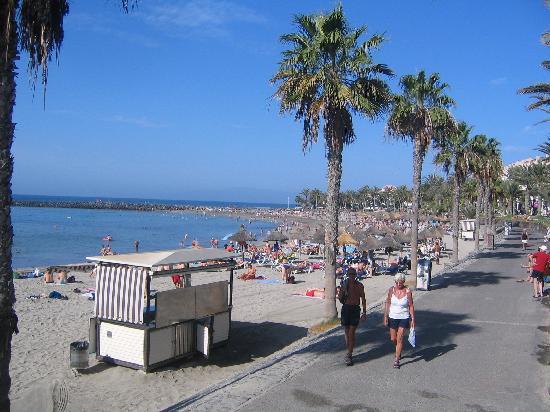 Cleopatra Palace Hotel: Playa al lado hotel