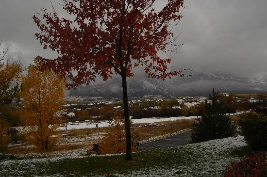 WorldMark Wolf Creek: view from back porch