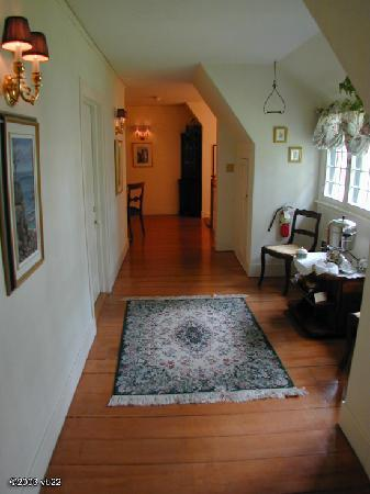 Pansy Patch: Hallway